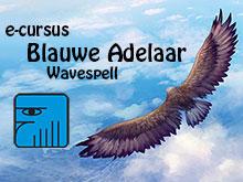e-cursus_adelaar_kl