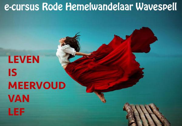 hemelwandelaar-wavespell_groot
