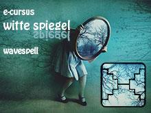 spiegel_cursusklein220